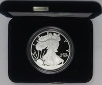 2015 W Silver Eagle Proof OGP