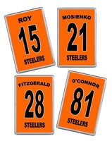 Sheffield Steelers 15/16 Player name and number Ice Hockey Fridge Magnet