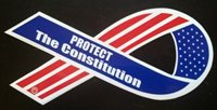 Protect the Constitution Vehicle ribbon magnet