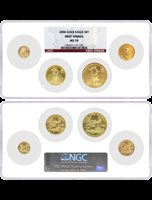 2006 Gold Eagle 4 Coin Set NGC MS70 Red Label First Strikes Multi Holder