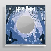 Harry Potter 35mm Commemorative Medal Perspex Display