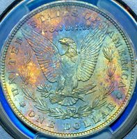HGR 1896 $1 Morgan ((Beautiful RAINBOW Toning)) PCGS MS-64 (52868)