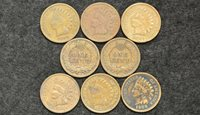 1909 (P) Lot Of 8 Indian Head Pennies