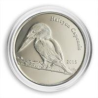 Shetland Islands, 1 pound, Halcyon Capensis, bird, fauna, nature, coin, 2015