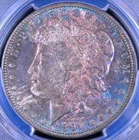 TONED 1891 Morgan Dollar - PCGS AU58 35987739