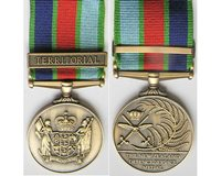 CM0474. COPY NZ DEFFENCE SERVICE MEDAL with one clasp