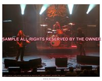 GOV`T MULE TWO 8x12 ORIG PHOTO 09 SHOW PHOTO ALLMAN BROTHERS 12STRING LESPAUL