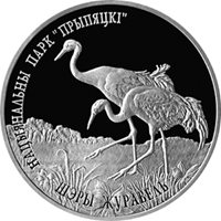 Belarus 2004 Prypiatsky National Park. COMMON CRANE Bird 20 rubles Silver coin