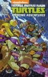 Teenage Mutant Ninja Turtles Amazing Adventures (2015-2016) #2 very fine