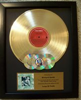 Custom Gold LP Album Record Award to Customize with CDs Display Music Style Disc