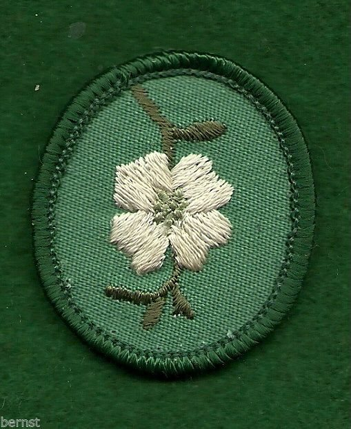 VINTAGE GIRL SCOUT TROOP CREST DAFFOLDIL FREE SHIPPING PLASTIC BACK