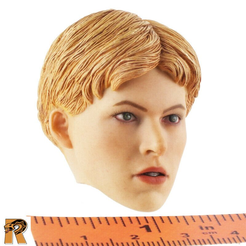 #2-1//6 Scale Head Sculpt Saint Knight Pop Toys Action Figure Rooted Hair